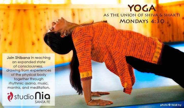 yoga_shivashakti
